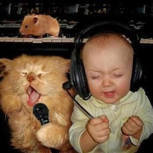 Kleptones - Bite (Queen,Dirty Bastard,Missy Elliott, Justin Timberlake) rock mash