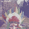 The Streams - My Heart Still Wants You Home (from the album 'Hopeless Play')