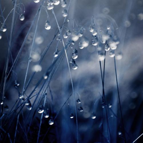Rainy day(Original mix) - Light Federation