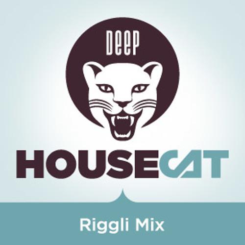 "Deep House Cat Show - ""Riggli Mix"""