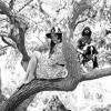 Angus and Julia Stone - All Of Me (Oliver Rado remix)