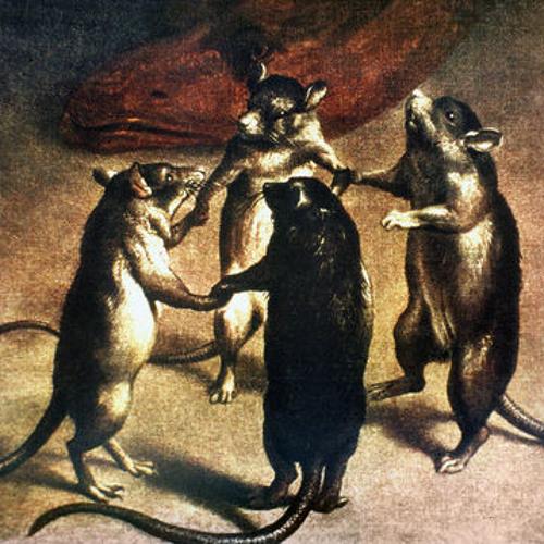 Waltzing Rats