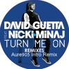 David Guetta Turn Me On Ft Nicki Minaj Aure905 Intro Remix Mp3