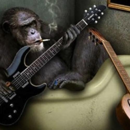 Noise Monkey - Flow