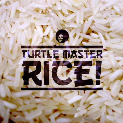 Turtle Master - Rice!