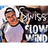 Swiss ft. Beyonce & T Pain - Slow Wind (Fresh REMIX)