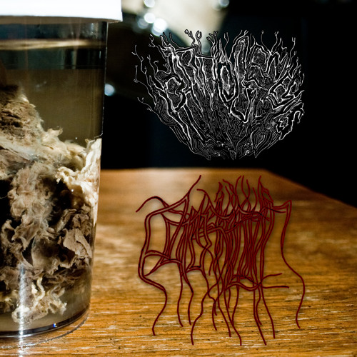 02 Pathogenesis - Beneath the Flesh