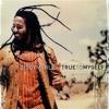 Vox Populi - True to Myself (Ziggy Marley)