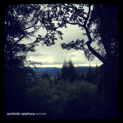 Synthetic Epiphany - Paper Rain  (Pay What You Want Survive EP)