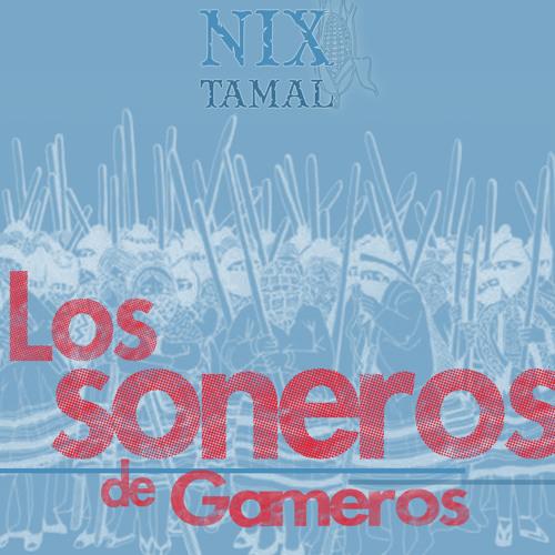 Los Soneros de Gameros-Yo No voy (Nixtamal remix)