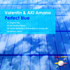Valentin & AKI Amano - Perfect Blue (AKI Amano Remix) [GALAXY RECZ]