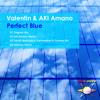Valentin & AKI Amano - Perfect Blue (Original Mix) [GALAXY RECZ]