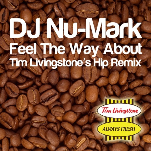 DJ Nu-Mark - Feel The Way About (Tim Livingstone's Hip Remix) FREE DOWNLOAD