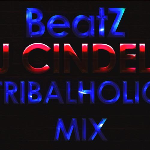 BeatZ (Dj Cindel's Tribaholic Mix)