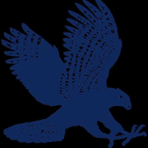 Black Hawk Rising (Duduk, Ethnic)