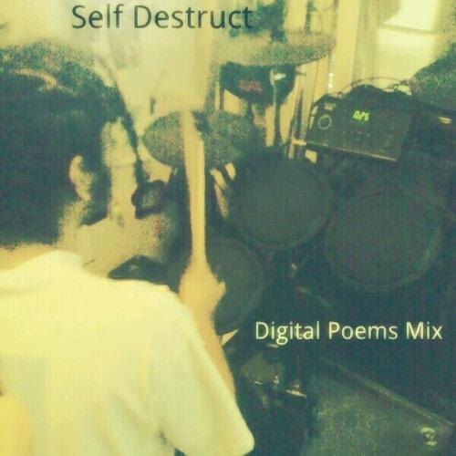 Digital Poems Mix