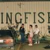 Kingfish 1