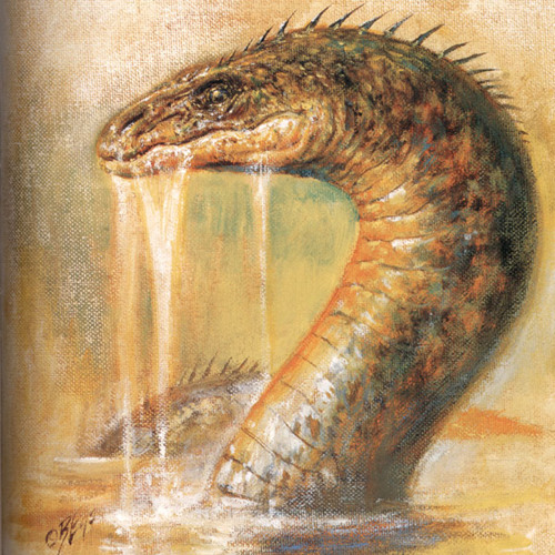 Surprises and Serpents