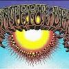 Grateful Dead ~ China Cat Sunflower