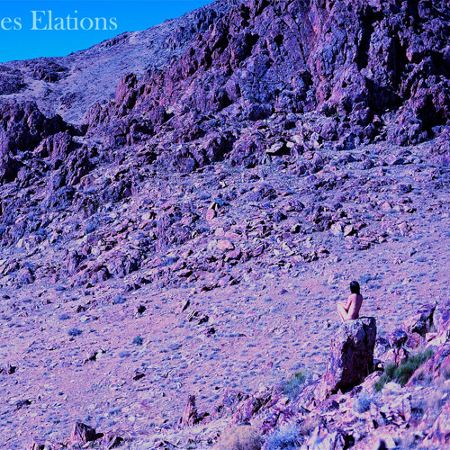 06 Tes Elations - Visceral
