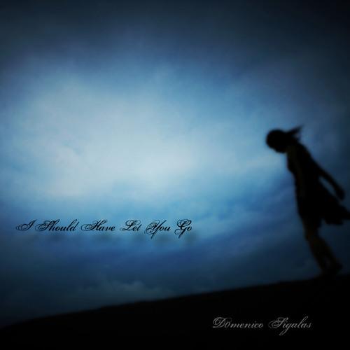 I Should Have Let You Go
