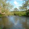 Birdsong 0830 River Eden fishing