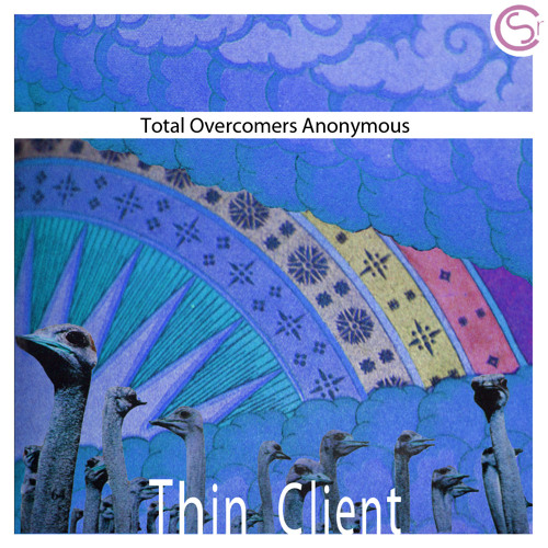 Total Overcomers Anonymous_Why I Walk