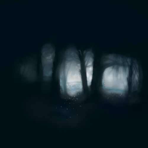 The night (snippet)