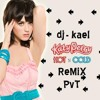 Katy Perry - Hot And cold (kael PVT bootleg remix)