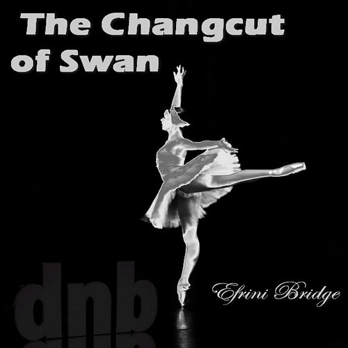 The changcut of swan