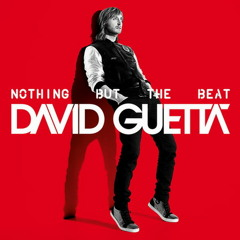 David guetta feat. nicki minaj -  turn me on (Higgarn remix)