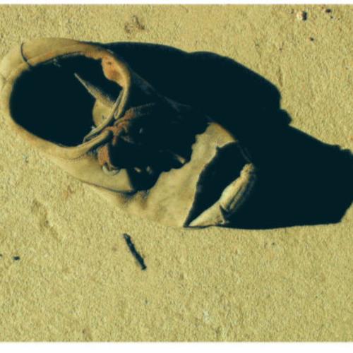 Broken Sole   [Remix of AFRO NINJA's 'Weathered Shoe']