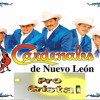 Los Cardenales De Nuevo Leon Mix 2012