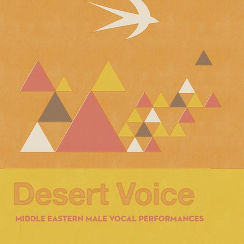 """Desert Voice dem """"Sahrawi"""" by Charlotte Partt"""