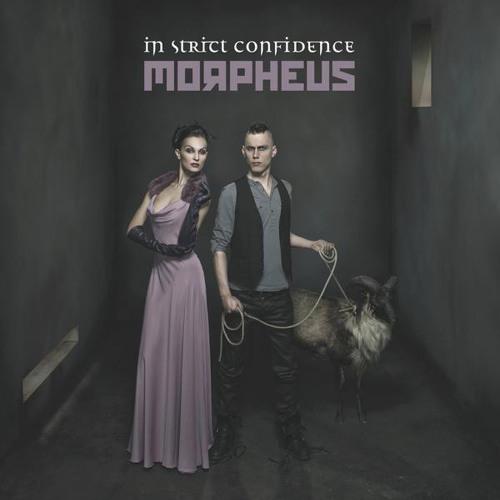 In Strict Confidence - Morpheus (Hecq Remix)