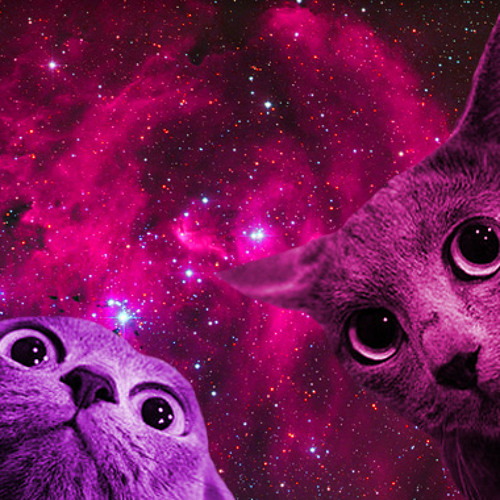 Freeform Meow Mix