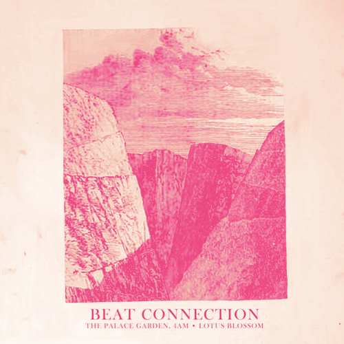 Beat Connection - Lotus Blossom