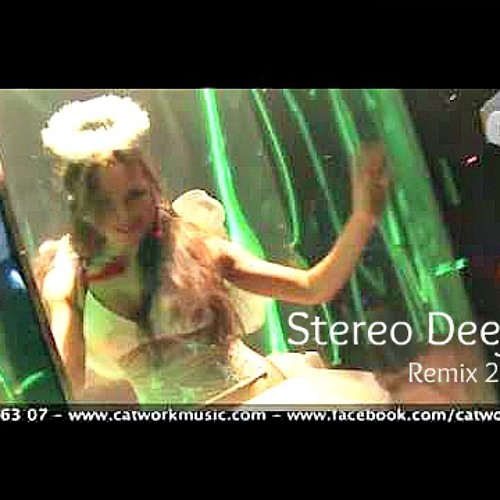Catwork Remix Engineers - Sweat Wet Love (Stereo Deejay 2@!2)