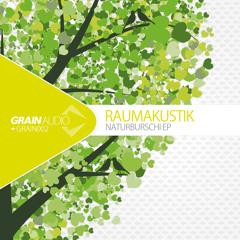 GRAIN002DIGITALONLY Raumakustik - Traumtanzen (Remix By Bunched)