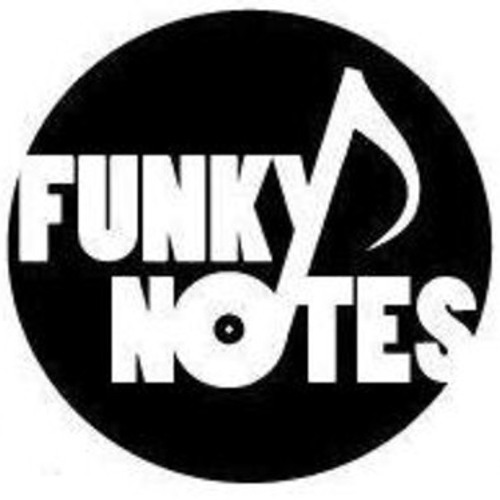 Funky Notes - Never Knew