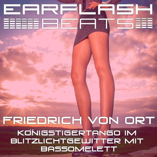 Friedrich von Ort - Blitzlichtgewitter