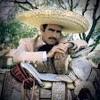 Vicente Fernández y ALGreens Por tu maldito amor
