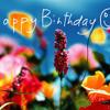 Joyeux anniversaire!