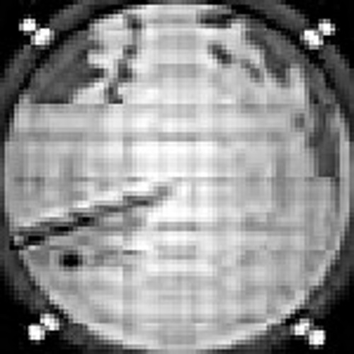 yeti - sonar