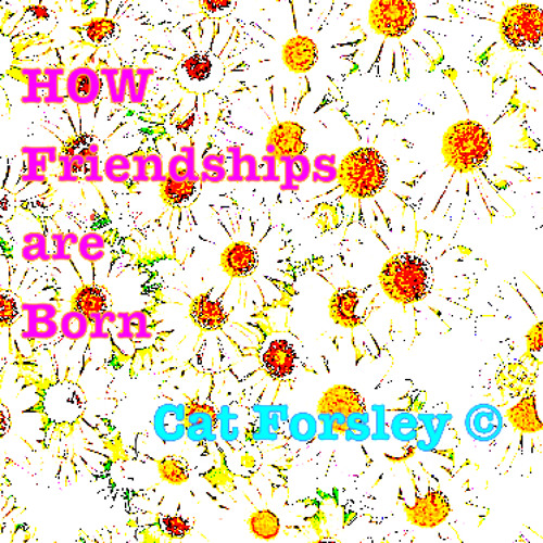 How Friendships are Born by Cat Forsley ©