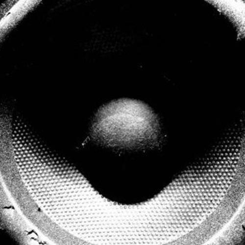 Bass Reflex 013 E.M.