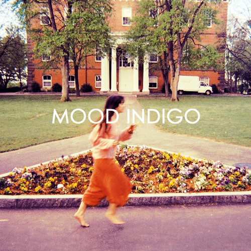 Mood Indigo - Dive