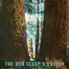 The Big Sleep - Gas Up the Jets