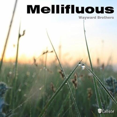 Wayward Brothers - Mellifluous (Original Mix)