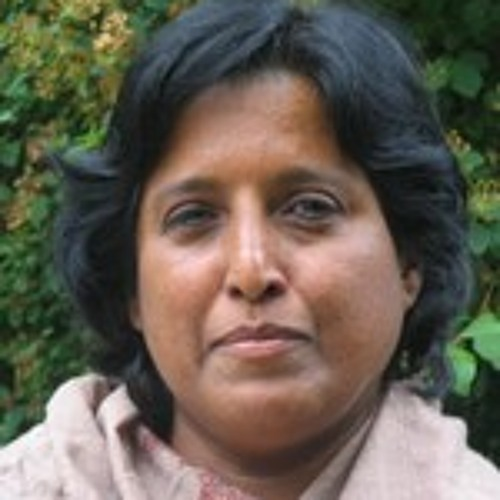 Rio+20: Third World Network's Meenakshi Raman says summit not a total disaster